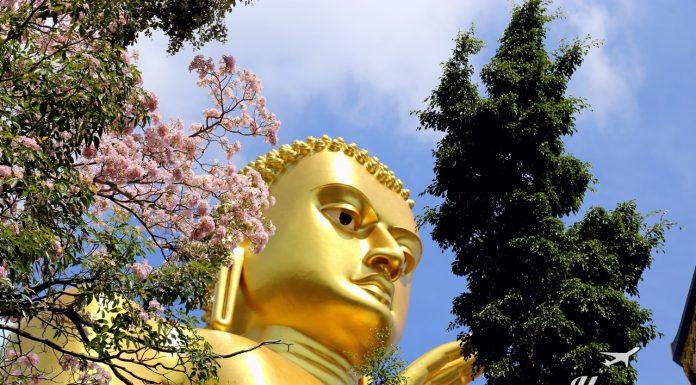 Happy Traveller Sri Lanka