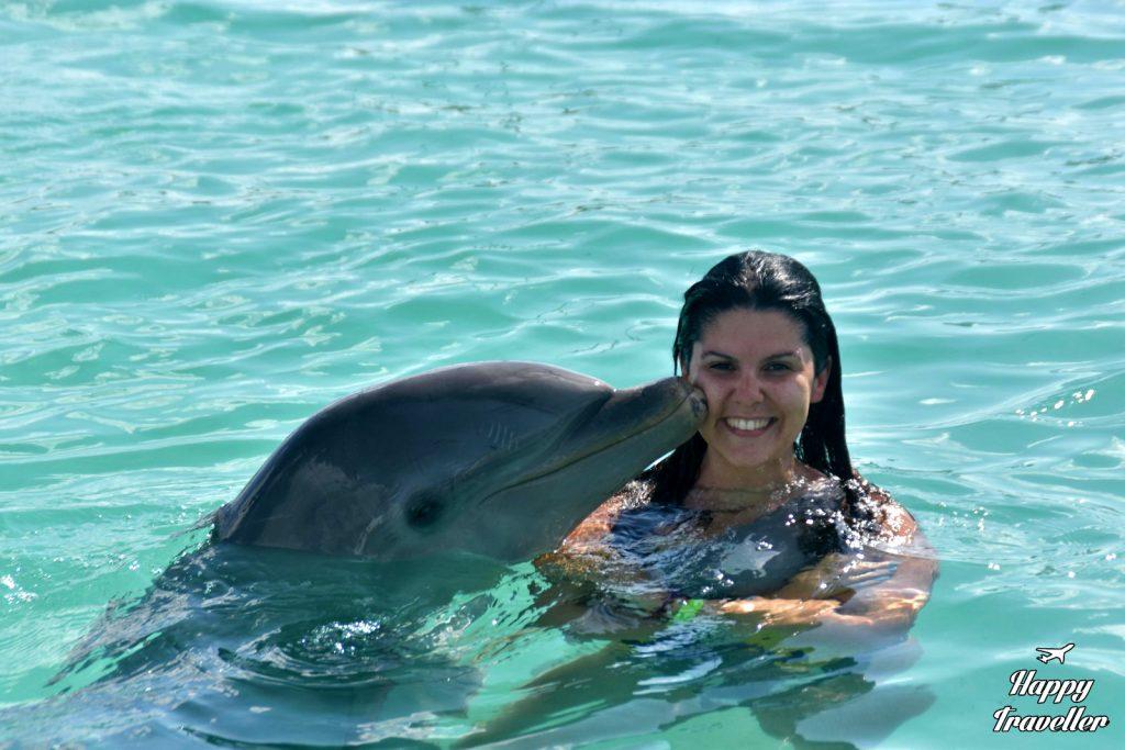 agios dominikos delfinia (3)