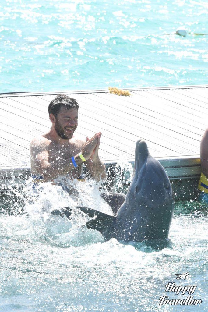 agios dominikos delfinia (5)