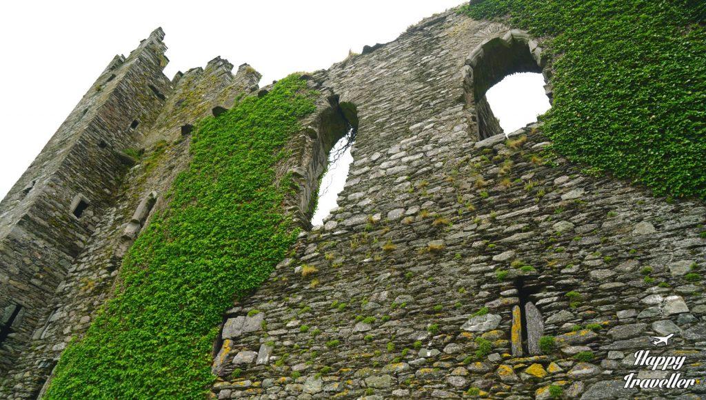 Bailycarbery castle (3)