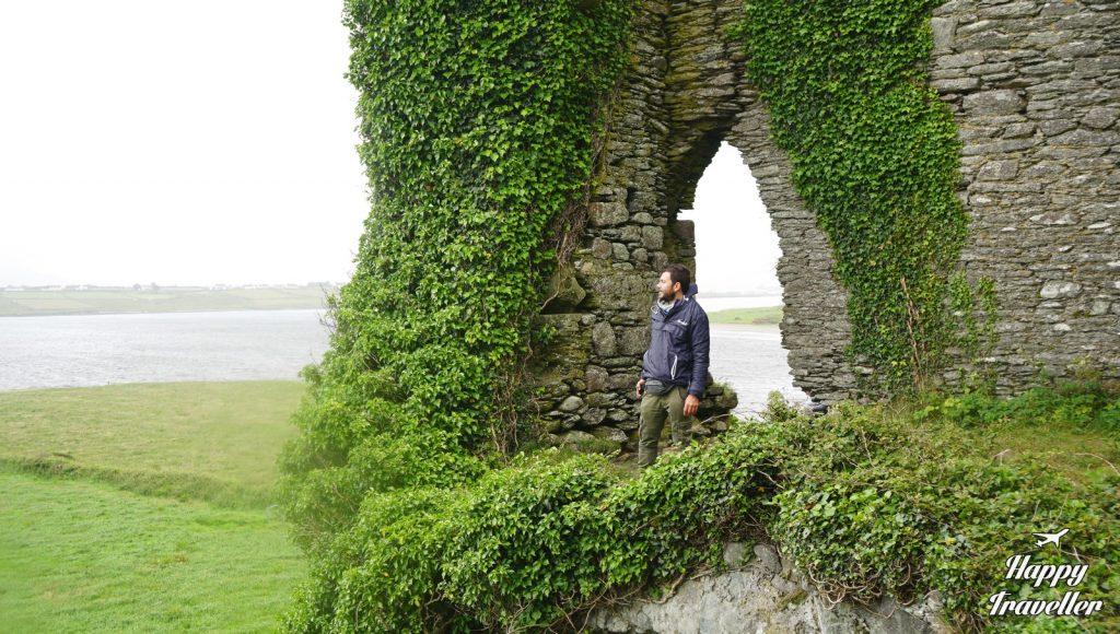bailycarbery castle ireland (2)