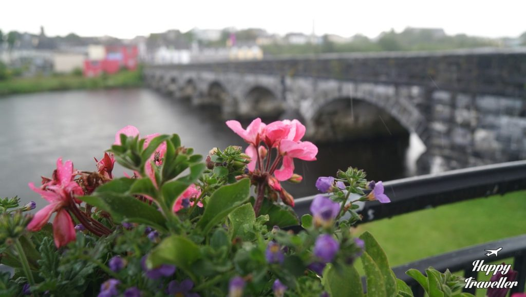 killorgrin ireland (7)