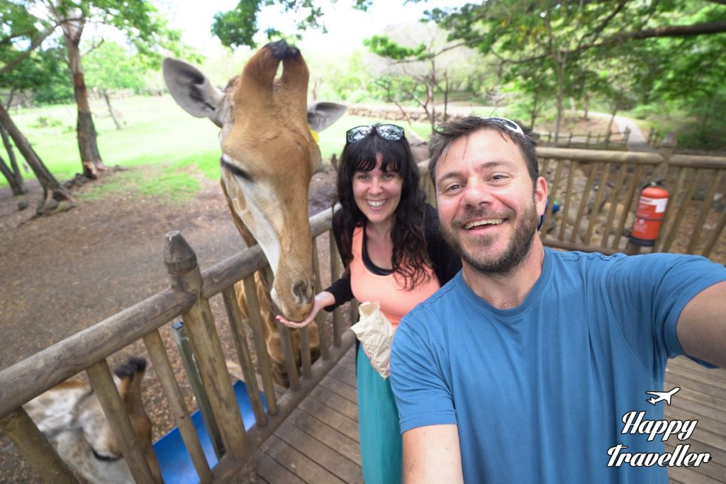 Casela World of Adventures Maurikios Happy Traveller Taxidi (3)