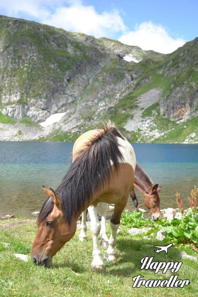 7 limnes bulgaria happy traveller (7)